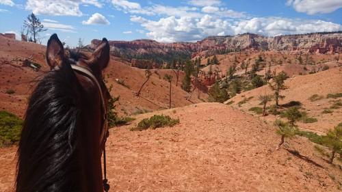 Dag 17: Bryce Canyon