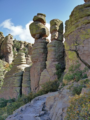 Dag 8: Chiricahua National Monument